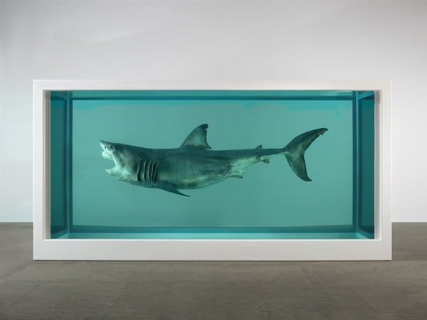 damien-hirst-the-immortal-shark_web_image