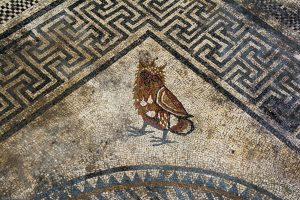 A mosaic of an Owl at the newly discovered ancient Roman city of Ucetia - Denis Gliksman INRAP