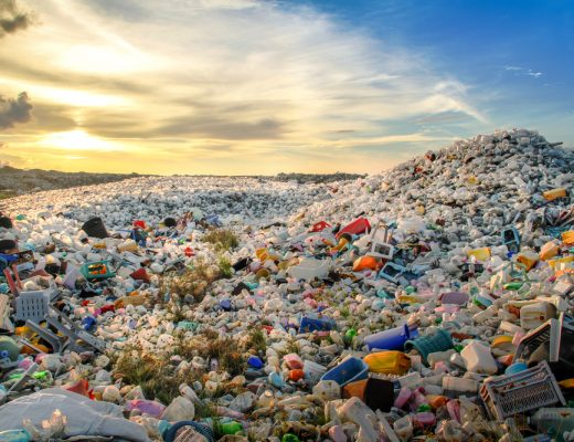 Scientists have created bacteria that can break down non-biodegradable plastic and help end global pollution