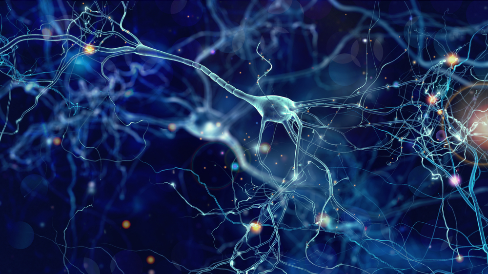 older people still generate new brain cells (neurons) study finds