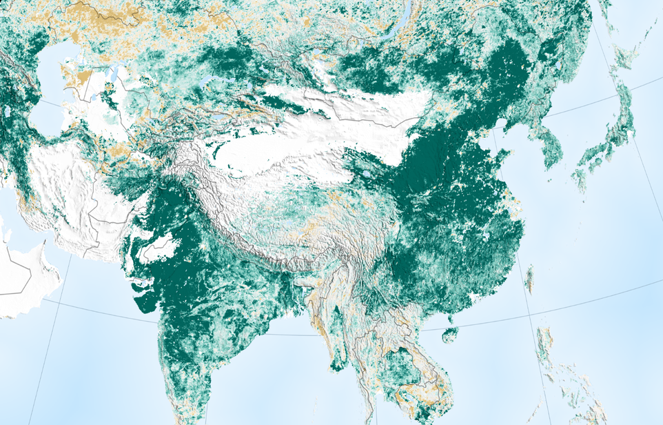 China and India has fought deforestation and actually made the Earth greener