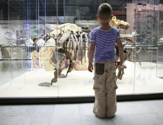 A child looking at an exhibit at a children's museum