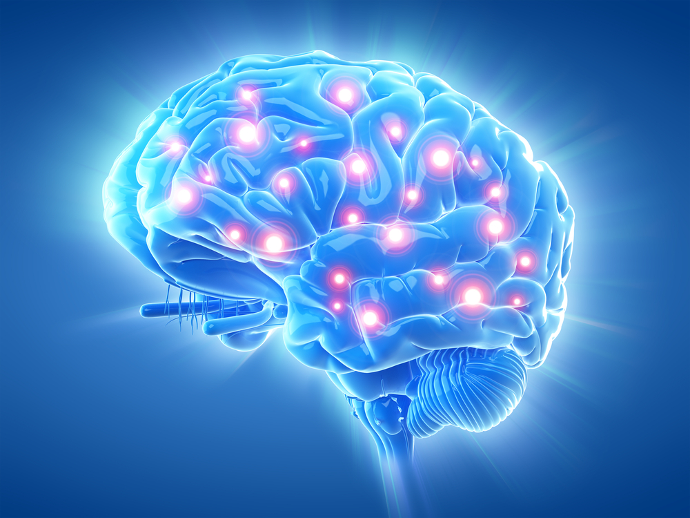 Doctors Record Brain Activity After Death