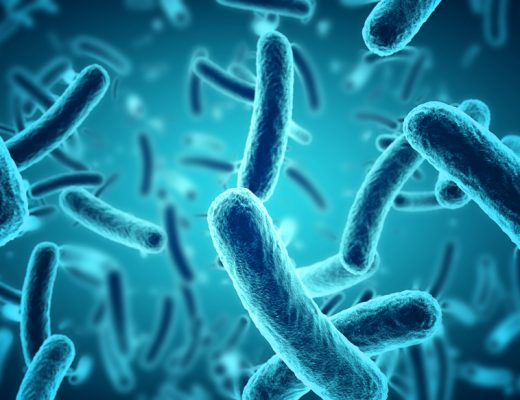 Moscow State University's Anatoli Brouchkov believes that the ancient bacteria Bacillus F holds the secret to eternal life