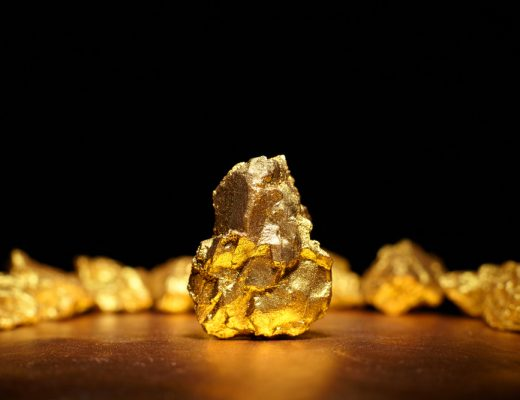 bacteria called cupriavidus metallidurans excretes copper and gold