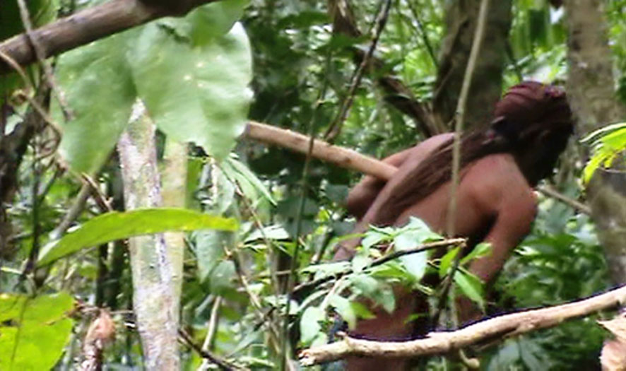 an indigenous Amazonian man known as the man of the hole has been capture on film