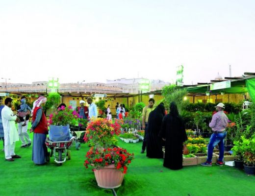 The first flower festival in Qatar at Souq Waqif - Salim Matramkot / The Peninsula